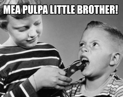 mea-pulpa-little-brother