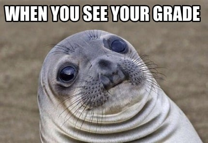 when-you-see-your-grade