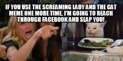 if-you-use-the-screaming-lady-and-the-cat-meme-one-more-time-im-going-to-reach-t