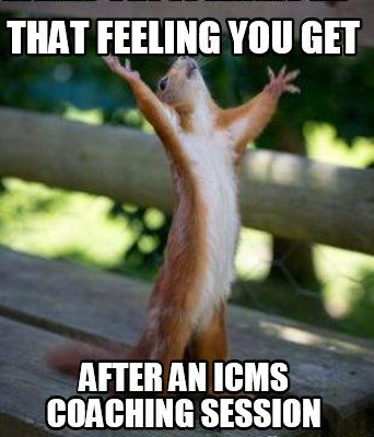 that-feeling-you-get-after-an-icms-coaching-session