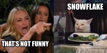 thats-not-funny-snowflake
