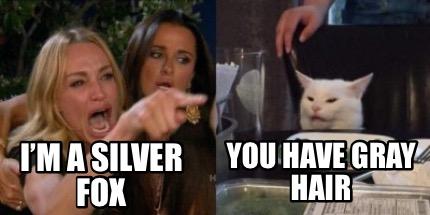 Meme Creator Funny I M A Silver Fox You Have Gray Hair Meme