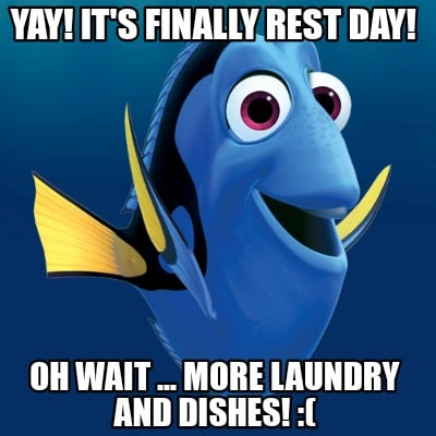 yay-its-finally-rest-day-oh-wait-...-more-laundry-and-dishes-