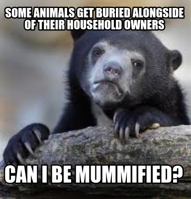 some-animals-get-buried-alongside-of-their-household-owners-can-i-be-mummified