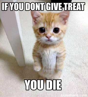 if-you-dont-give-treat-you-die