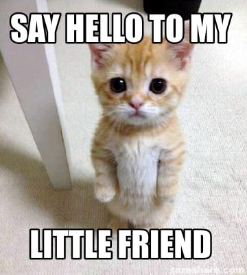 say-hello-to-my-little-friend36