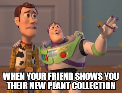 when-your-friend-shows-you-their-new-plant-collection