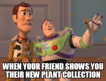 when-your-friend-shows-you-their-new-plant-collection8