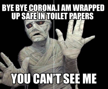 bye-bye-corona.i-am-wrapped-up-safe-in-toilet-papers-you-cant-see-me