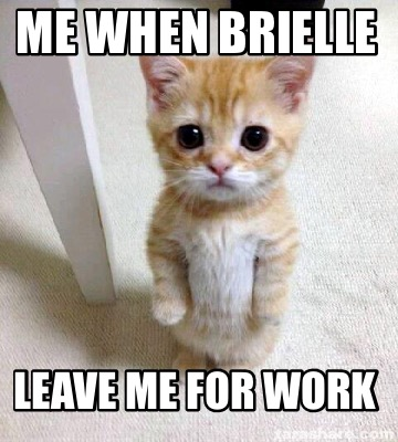 me-when-brielle-leave-me-for-work