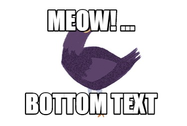 meow-...-bottom-text