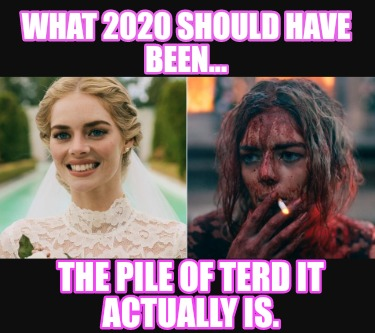 what-2020-should-have-been...-the-pile-of-terd-it-actually-is