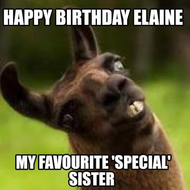 happy-birthday-elaine-my-favourite-special-sister