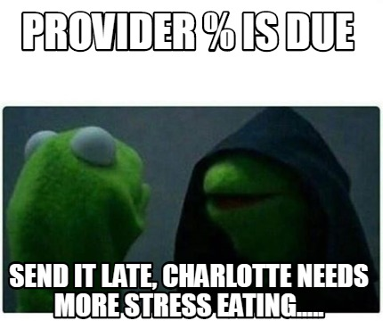 provider-is-due-send-it-late-charlotte-needs-more-stress-eating