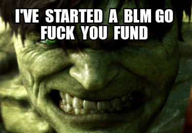 ive-started-a-blm-go-fuck-you-fund