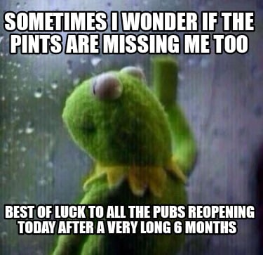 sometimes-i-wonder-if-the-pints-are-missing-me-too-best-of-luck-to-all-the-pubs-