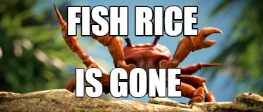 fish-rice-is-gone
