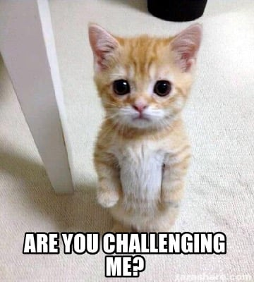 are-you-challenging-me