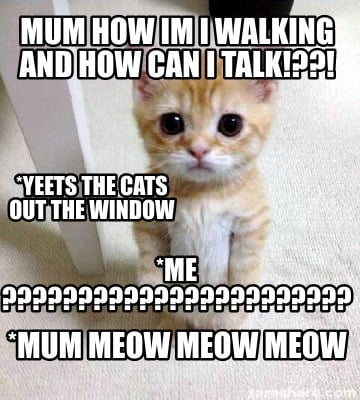 mum-how-im-i-walking-and-how-can-i-talk-mum-meow-meow-meow-me-yeets-the-cats-out