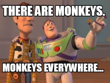 there-are-monkeys.-monkeys-everywhere