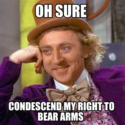 oh-sure-condescend-my-right-to-bear-arms