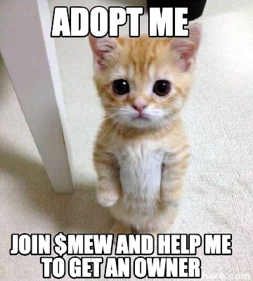 join-mew-and-help-me-to-get-an-owner-adopt-me