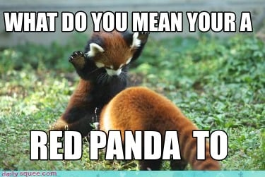 Meme Creator Panda Meme Generator At Memecreator Org