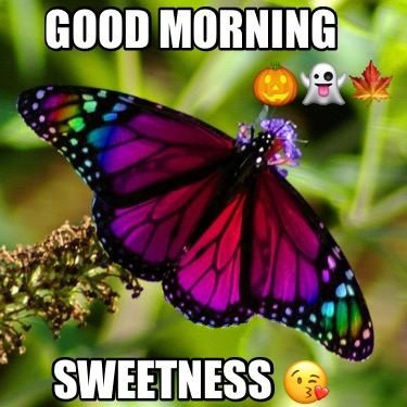 good-morning-sweetness-