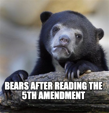 bears-after-reading-the-5th-amendment