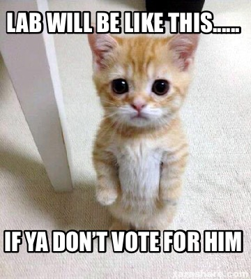 lab-will-be-like-this......-if-ya-dont-vote-for-him