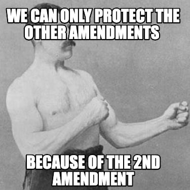 we-can-only-protect-the-other-amendments-because-of-the-2nd-amendment