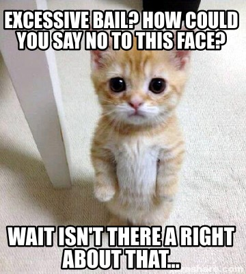 excessive-bail-how-could-you-say-no-to-this-face-wait-isnt-there-a-right-about-t
