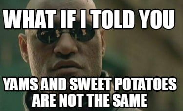 what-if-i-told-you-yams-and-sweet-potatoes-are-not-the-same