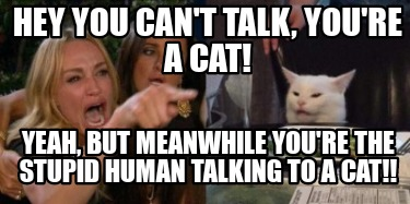 hey-you-cant-talk-youre-a-cat-yeah-but-meanwhile-youre-the-stupid-human-talking-