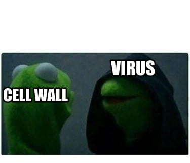 cell-wall-virus