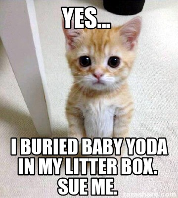 yes...-i-buried-baby-yoda-in-my-litter-box.-sue-me