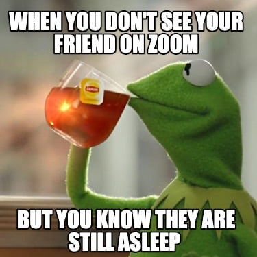 when-you-dont-see-your-friend-on-zoom-but-you-know-they-are-still-asleep