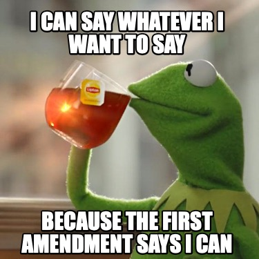 i-can-say-whatever-i-want-to-say-because-the-first-amendment-says-i-can