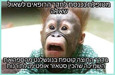 Meme Creator - Funny NOOOOO! Darwinism is a lie? So God ...