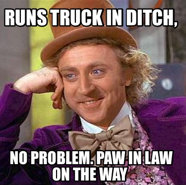runs-truck-in-ditch-no-problem.-paw-in-law-on-the-way