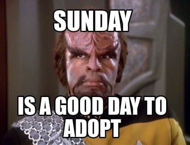 sunday-is-a-good-day-to-adopt