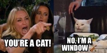 youre-a-cat-no-im-a-window-