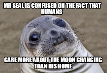 mr-seal-is-confused-on-the-fact-that-humans-care-more-about-the-moon-changing-th