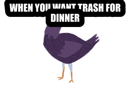 when-you-want-trash-for-dinner