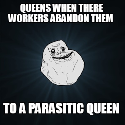 queens-when-there-workers-abandon-them-to-a-parasitic-queen