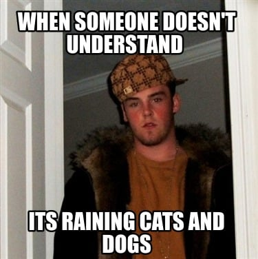 when-someone-doesnt-understand-its-raining-cats-and-dogs