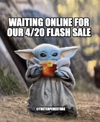 waiting-online-for-our-420-flash-sale-theterpenestore0