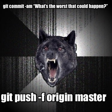 git-commit-am-whats-the-worst-that-could-happen-git-push-f-origin-master