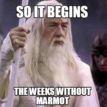 so-it-begins-the-weeks-without-marmot
