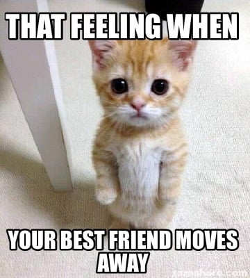 Friend best when moves your The 7